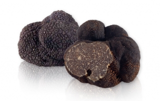 fresh_french_black_winter_truffles-lg