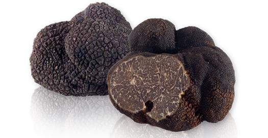 fresh_french_black_winter_truffles-lg