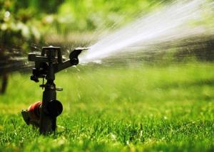 trucos-para-ahorrar-agua-en-el-riego-de-tu-jardin-01